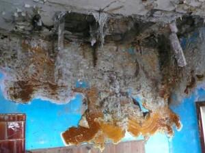 Schimmel nach nicht versorgtem Wasserrohrbruch in entmietetem Seitenflügel